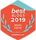 best blogs 2019 breast cancer